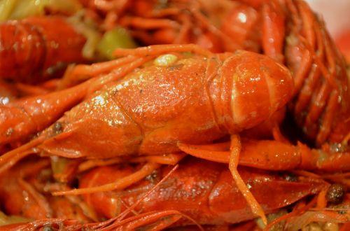 Crayfish (a)
