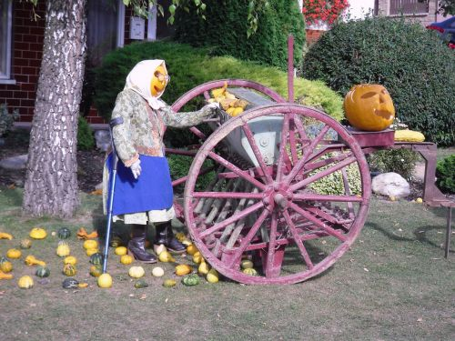 creation pumpkin seeding-machine