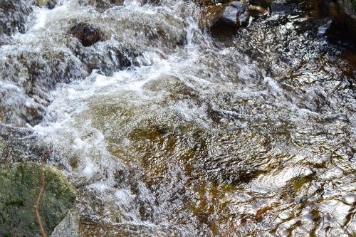 mažas, upelis, parkas, vanduo, greitai, Iš arti, upelis