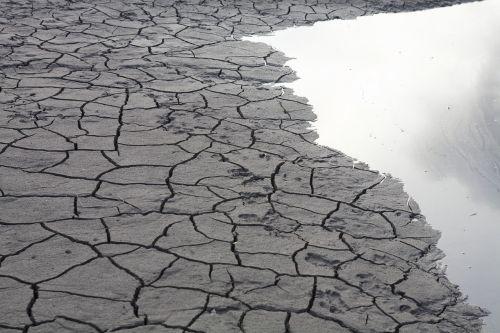 creek dry nature