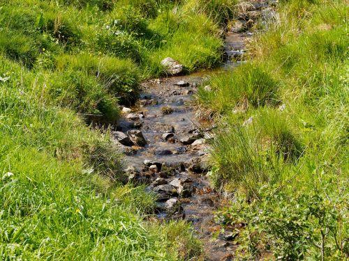creek water cascade