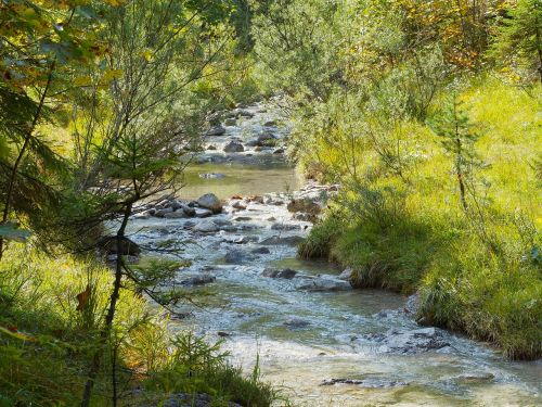creek water courses river