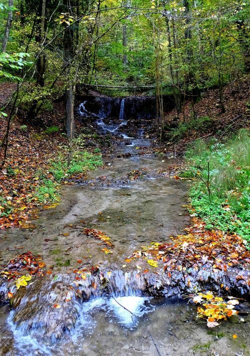 creek bach nature