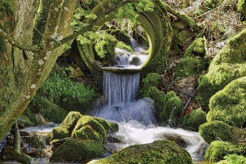 creek  nature  waterfall