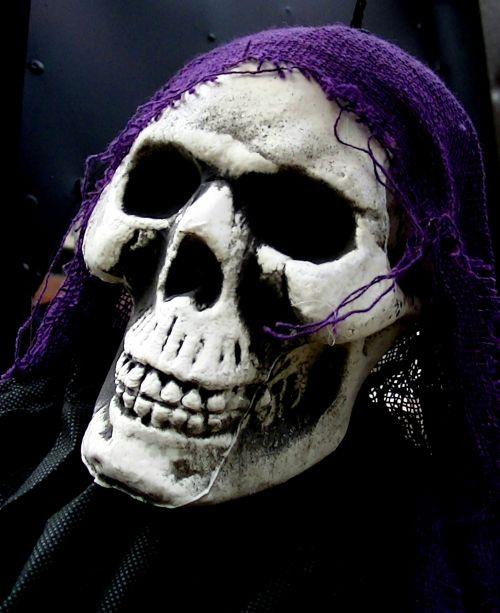 Creepy Skeleton Skull