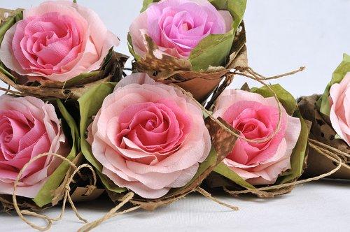crepe paper  paper  roses