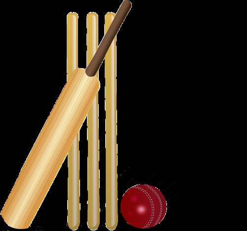 cricket cricket bat bat