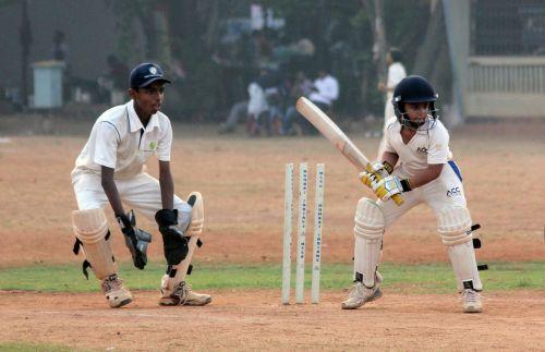 cricket sports view