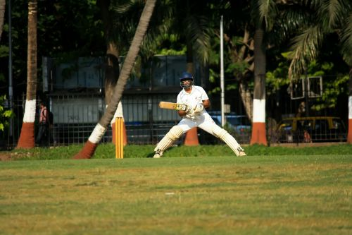 cricket batsman player
