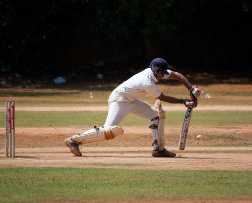 cricket cricketer batting