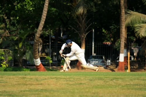 cricket stroke batting