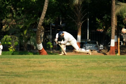 cricket batting sports