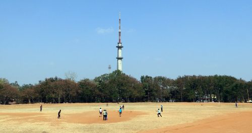 cricket sports game