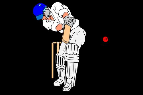 cricket  cricket sport  ball game