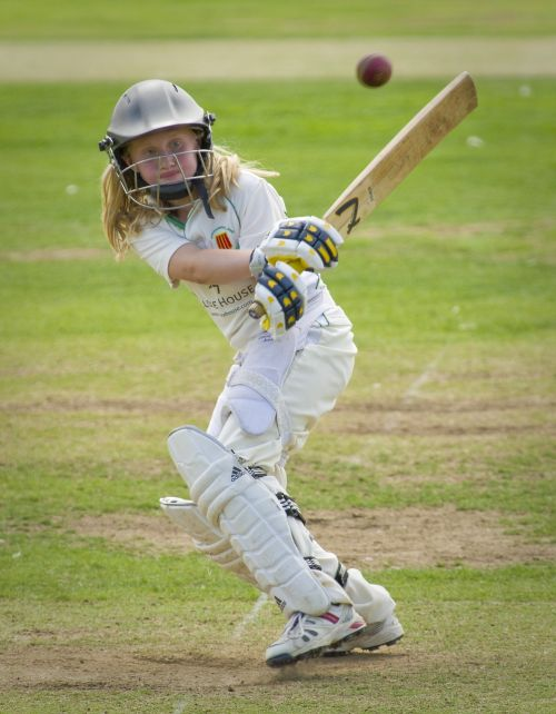 cricket batting batter