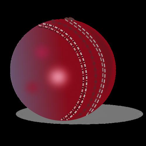 cricket ball cricket ball