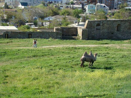 crimea sudak and novy svet genoese fortress