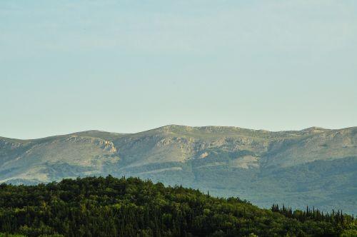 crimea alushta forest mountains