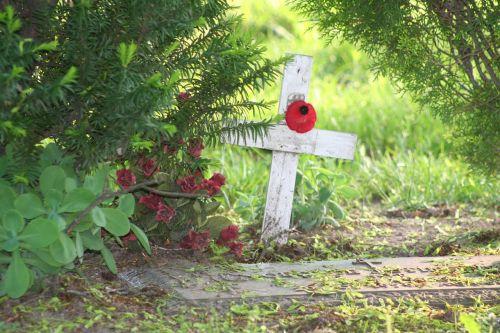 cross poppy grave