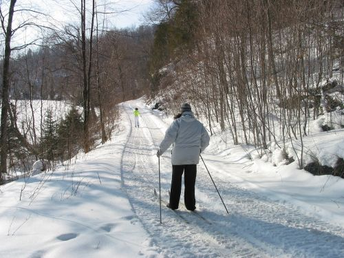 cross country skiing snow winter