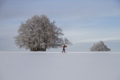cross-country skiing winter landscape