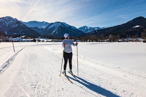 cross country skiing  ski  winter