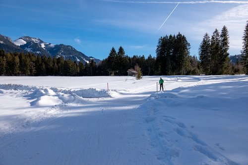 cross country skiing  snow  traces