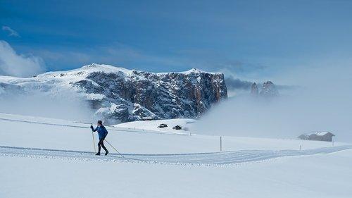 cross country skiing  cross-country skiing  snow