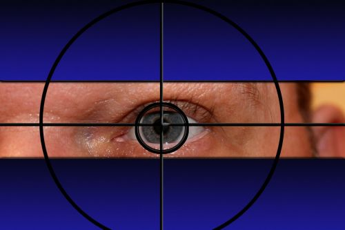 crosshair visor target