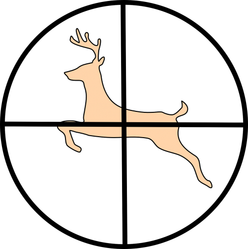 crosshair hunting deer