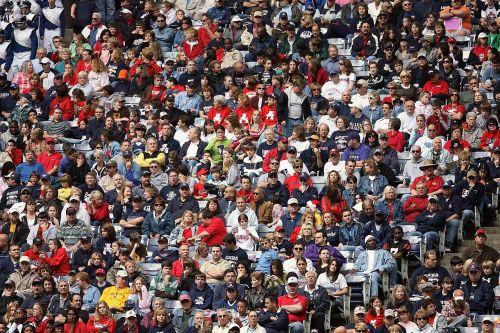 crowd sports fans spectators