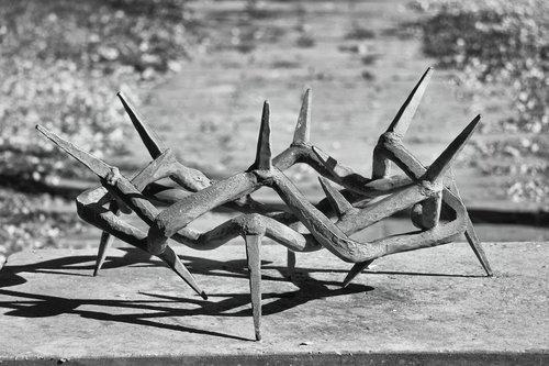crown of thorns  plastic  metal