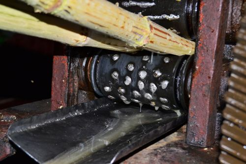 cuba vinales sugar cane press