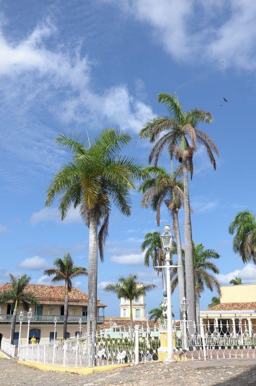 cuba trinidad palms