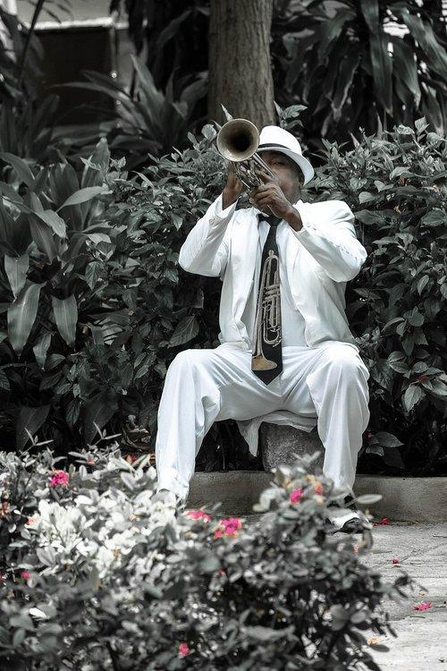cuba  havana  trumpeter