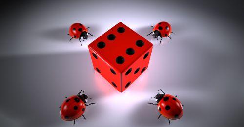 cube lucky ladybug puzzles