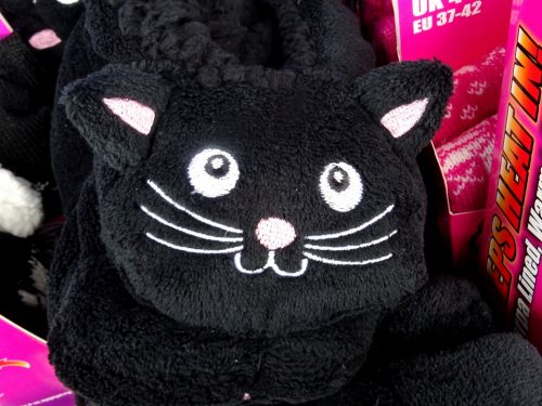 Cuddly Black Cat