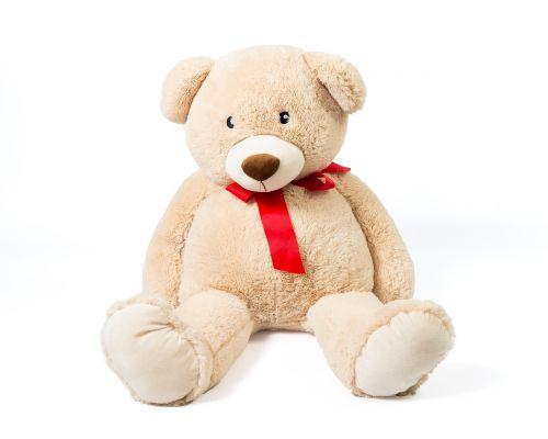 cuddly teddy bear teddy bear