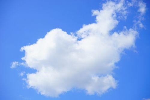 kubo debesys,debesys,dangus,vasaros diena,mėlynas,balta,debesys formos,saulėta diena,saulėtas,saulė,saulės spindulys,nuostabi diena,vasara,cumulus humilis,cumulus mediocris,cumulus,cumulus cloud,oras,klimatas,klimato atšilimas,virš debesų,dangaus mėlynumo,azur