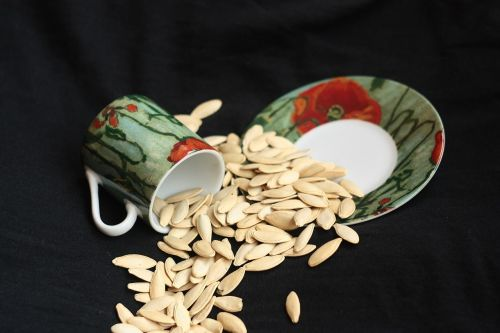cup saucer sowing