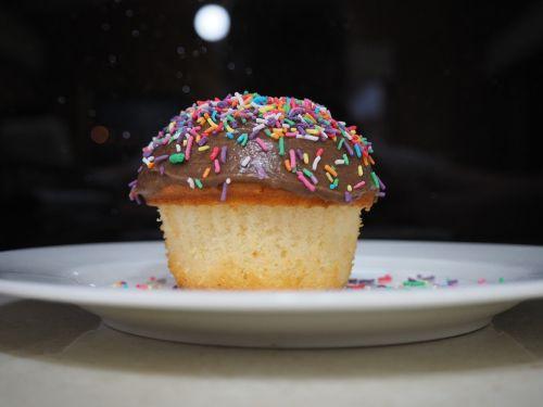 cupcake sprinkles party