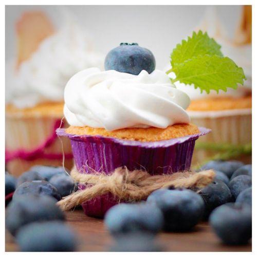 cupcake blueberries garnish