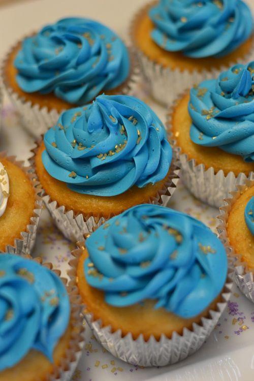 cupcake dessert blue