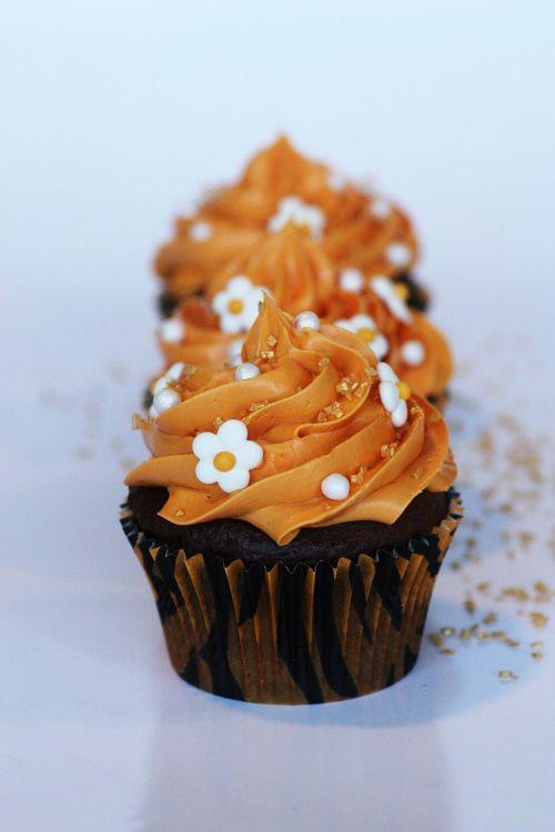cupcakes muffin muffins