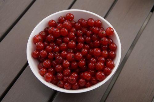 currants berries bowl