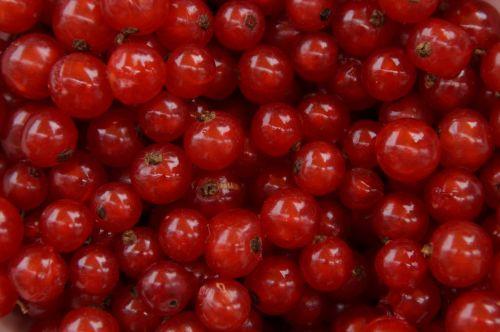 currants berries fruit