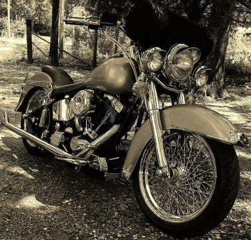 custom harley motorcycle chrome