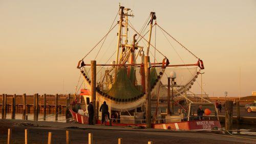 cutter sea port