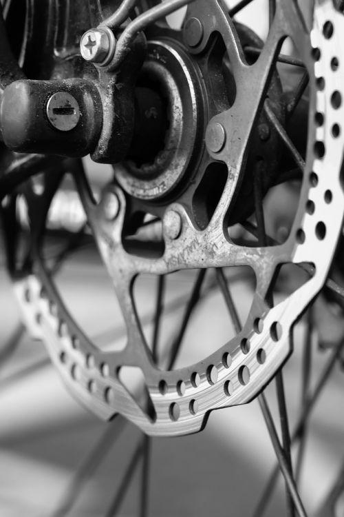 cycle wheel bicycle
