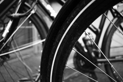 cycles wheels bikes